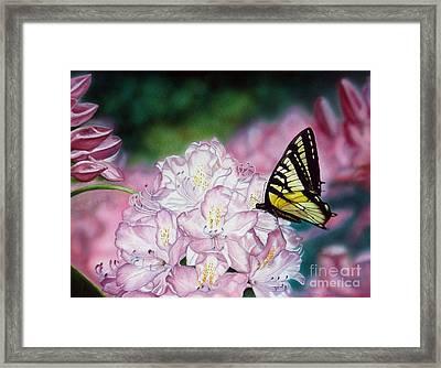 Sweet Abundance Framed Print
