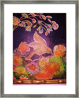 Sweet And Shinybird Framed Print by Anne-Elizabeth Whiteway