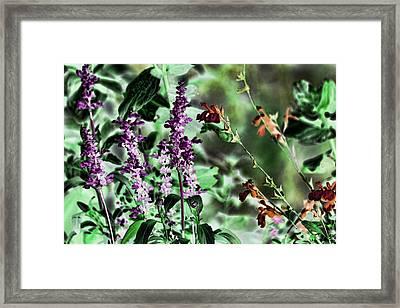 Sweet Anticipation Framed Print by Bonnie Bruno