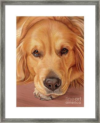 Framed Print featuring the mixed media Sweet As Honey by Donna Mulley