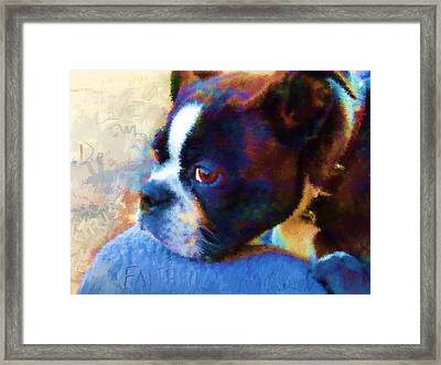 Sweet Boston Betty Framed Print by Cindy Wright