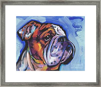 Sweet Bully Framed Print by Lea S