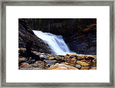 Sweet Creek Falls , Wa Framed Print