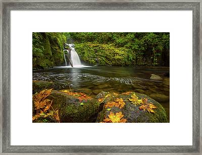 Framed Print featuring the photograph Sweet Creek Falls In Autumn by Patricia Davidson