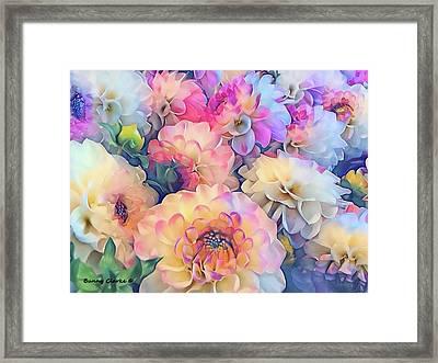 Sweet Dahlias Framed Print