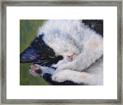 Sweet Dreams Framed Print by Debra Mickelson