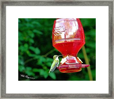 Sweet Drinks Framed Print by Wild Thing
