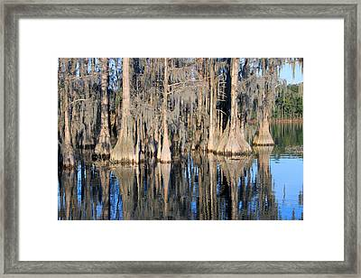 Sweet Home Florida Framed Print by Rick McKinney