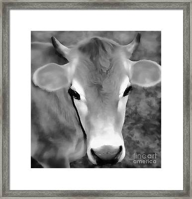 Framed Print featuring the painting Sweet Jersey Girl - Jersey Cow by Janine Riley