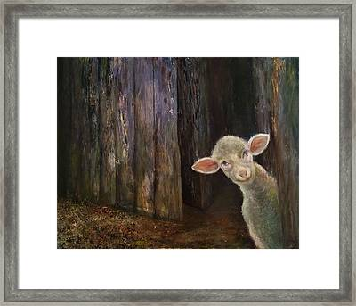 Sweet Lamb Framed Print