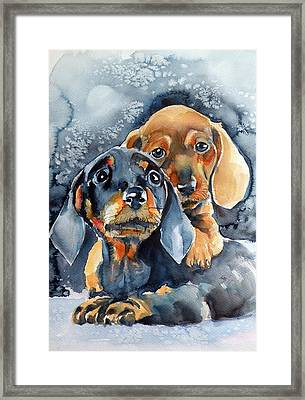 Sweet Little Dogs Framed Print by Kovacs Anna Brigitta