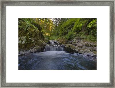 Sweet Little Waterfall Framed Print by David Gn