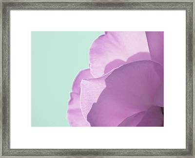Sweet Loving Faith Framed Print