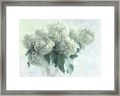 Sweet Memories Framed Print by Georgiana Romanovna
