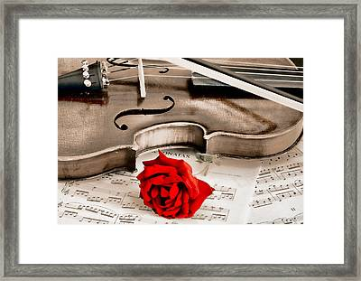 Sweet Music Framed Print