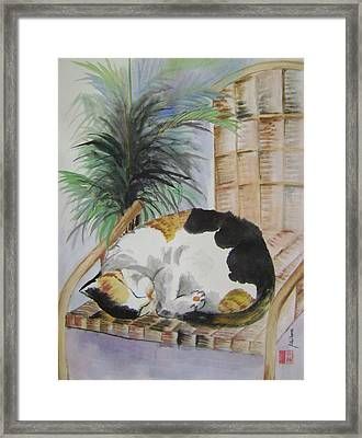 Sweet Nap Framed Print by Lian Zhen