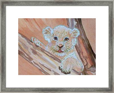 Framed Print featuring the painting Sweet One by Connie Valasco
