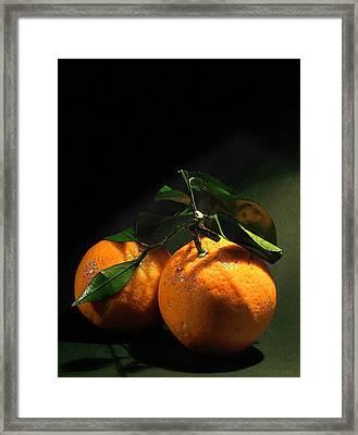 Sweet Orange Framed Print