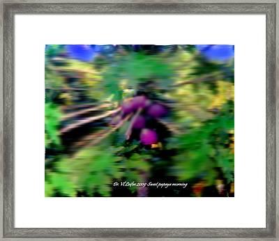 Sweet Papaya Morning Framed Print by Dr Loifer Vladimir