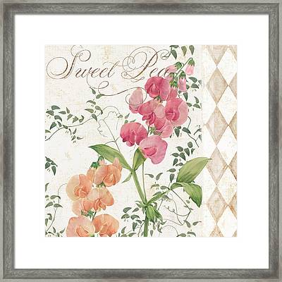 Sweet Pea Flowering Plant Framed Print by Mindy Sommers