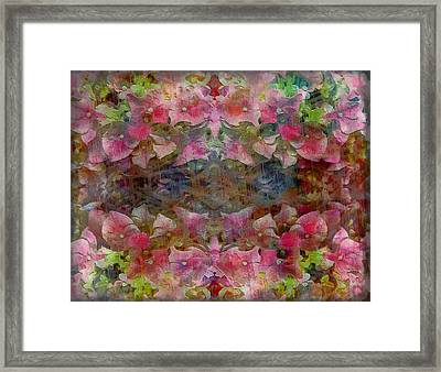Sweet Pink Dreams Framed Print