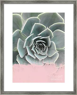Sweet Pink Paint On Succulent Framed Print