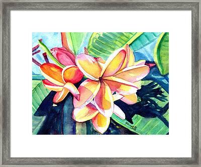 Sweet Plumeria 2 Framed Print