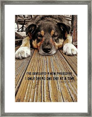 A Dogs Life Quote Framed Print by JAMART Photography
