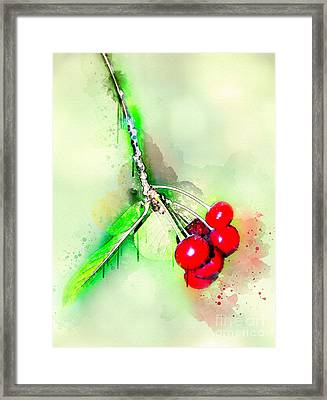 Sweet Red Cherries Framed Print by Svetlana Sewell