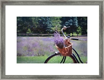 Sweet Ride Framed Print by Lori Deiter