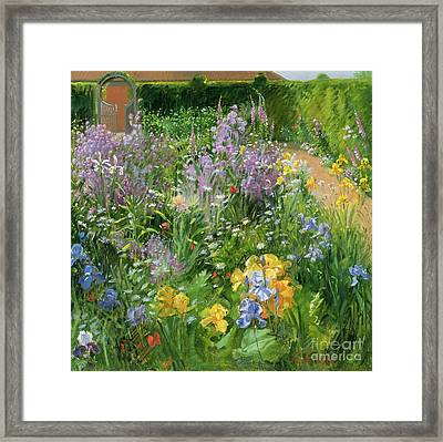 Sweet Rocket - Foxgloves And Irises Framed Print