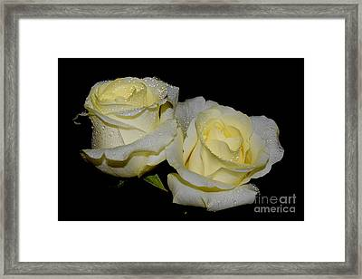 Friendship Roses Framed Print