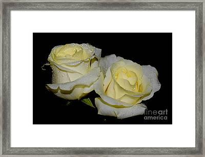 Friendship Roses Framed Print