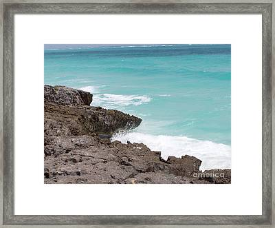 Sweet Saltyness Framed Print by Amanda Barcon