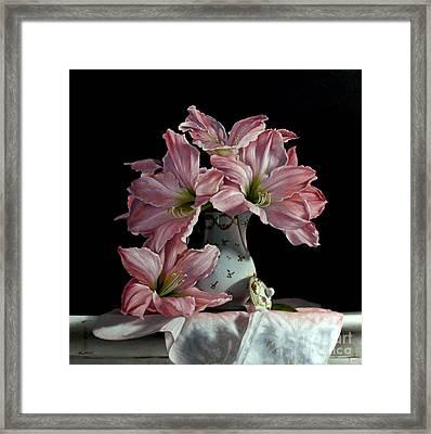 Sweet Star Amaryllis Framed Print by Larry Preston