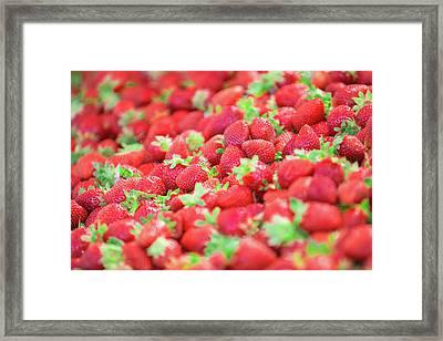 Sweet Strawberries Framed Print by Todd Klassy