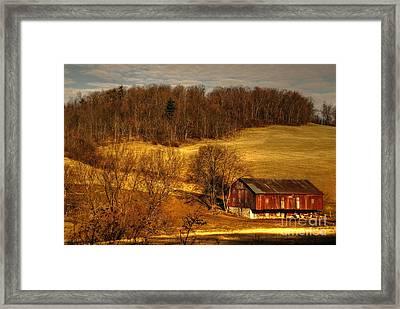 Sweet Sweet Surrender Framed Print by Lois Bryan