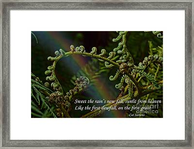 Sweet The Rain's New Fall Framed Print