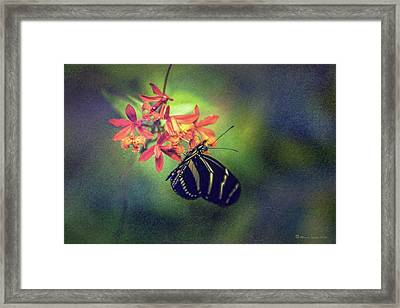 Sweet Times Framed Print by Marvin Spates