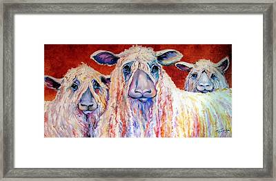 Sweet Wensleydales Sheep By M Baldwin Framed Print by Marcia Baldwin