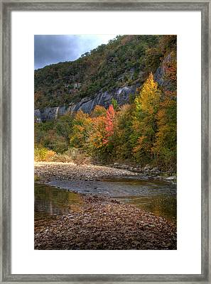 Framed Print featuring the photograph Sweetgums At Steel Creek  by Michael Dougherty