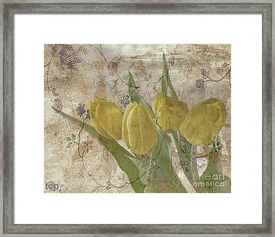 Framed Print featuring the photograph Sweetness by Traci Cottingham
