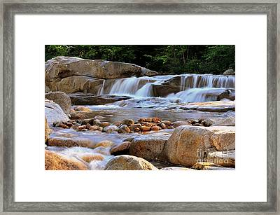 Swift River  Framed Print by Catherine Reusch Daley