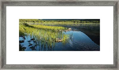 Swiftcurrent Lake Glacier National Park Panorama Framed Print