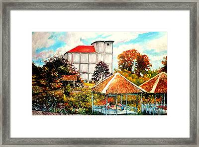 Swifts  Nest's Building Framed Print