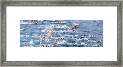 Swimmers In Motion At The Start Framed Print