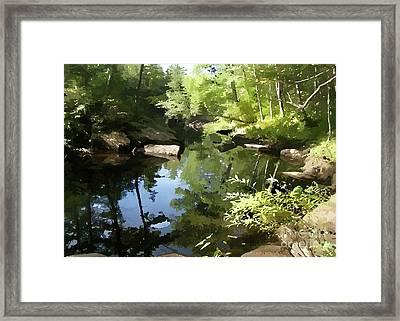 Swimmin' Hole Framed Print by Betsy Zimmerli