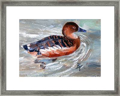 Framed Print featuring the painting Swimming Aceo by Brenda Thour