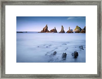 Swimming Dragons Framed Print