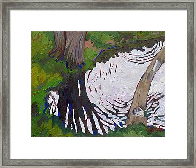 Swimming Hole Reflections Framed Print by Phil Chadwick